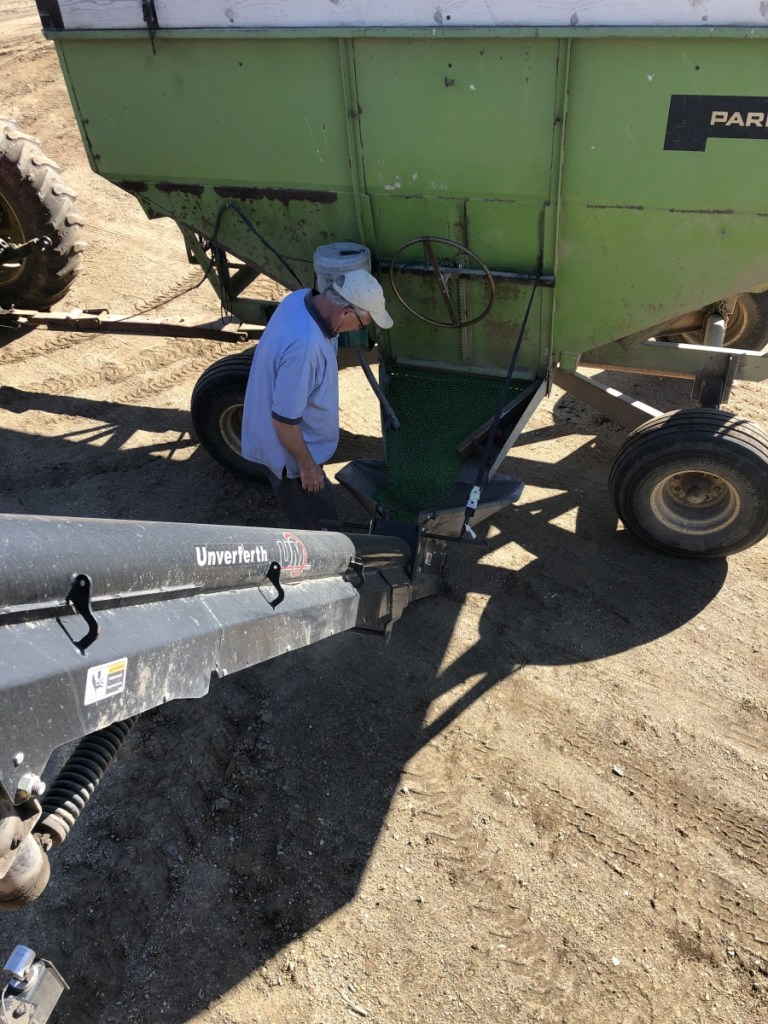 Filling soybeans