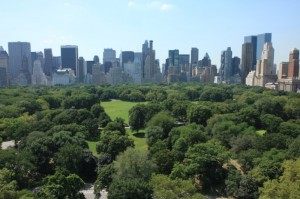 NYC Skyline over Central Park...Goodbye..