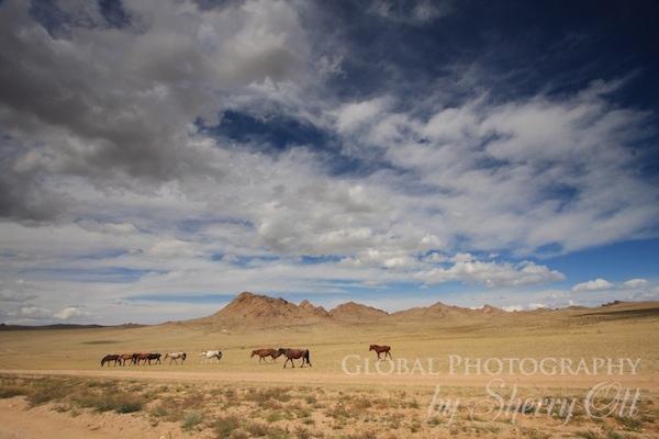 mongolia landscapes