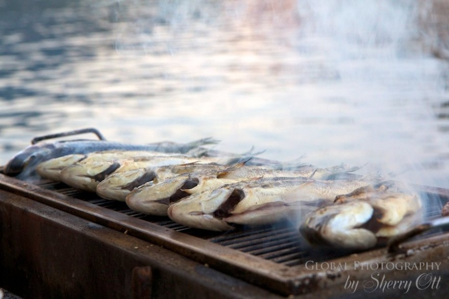 Grilling fish on the Mediterranean