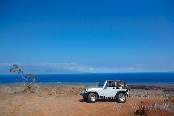 Jeep four -wheeling in Lana