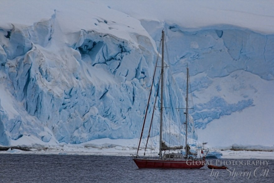 sailboat antarctica