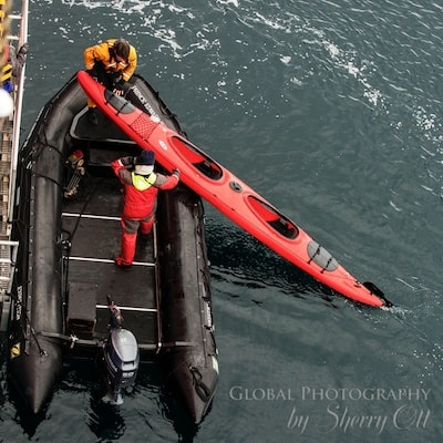 Loading a kayak in the water - things to do in antarctica