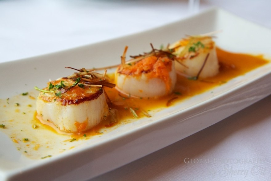 Scallops Nova Scotia