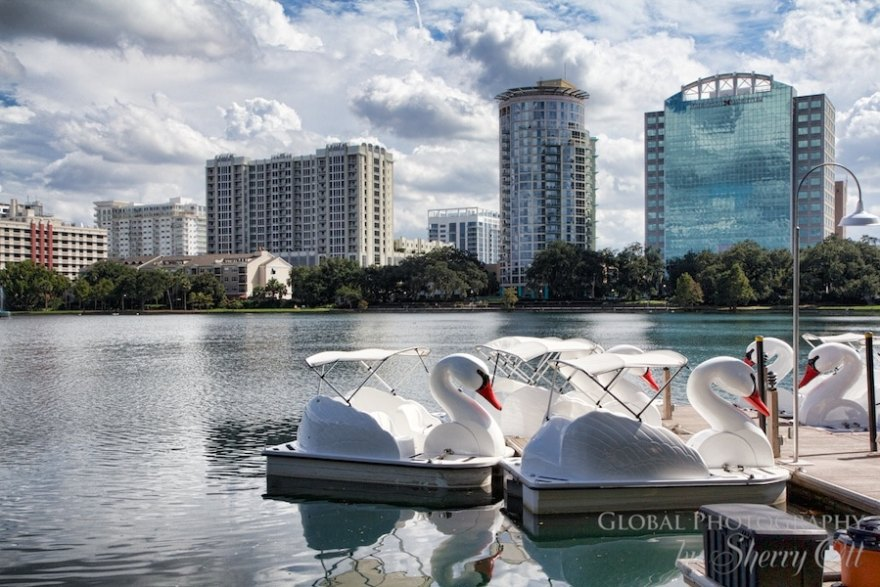 what to do in Orlando lake eola swans