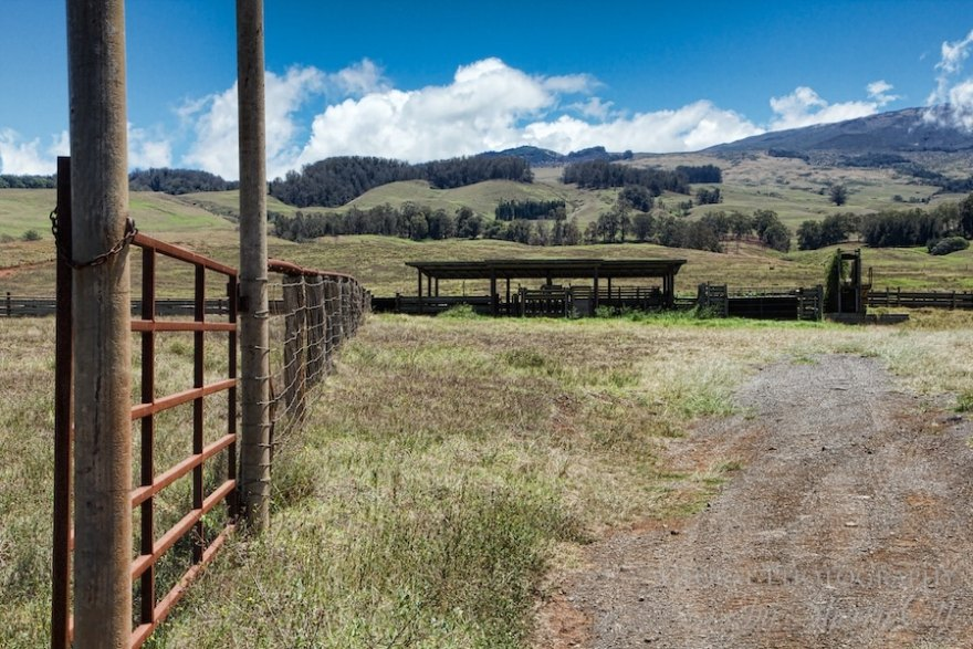 ranches maui