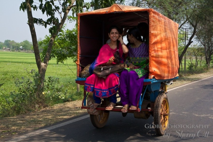 Rickshaw Run Window (5)