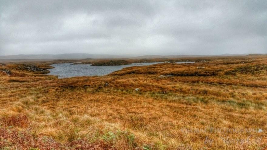 Ireland landscape bogs