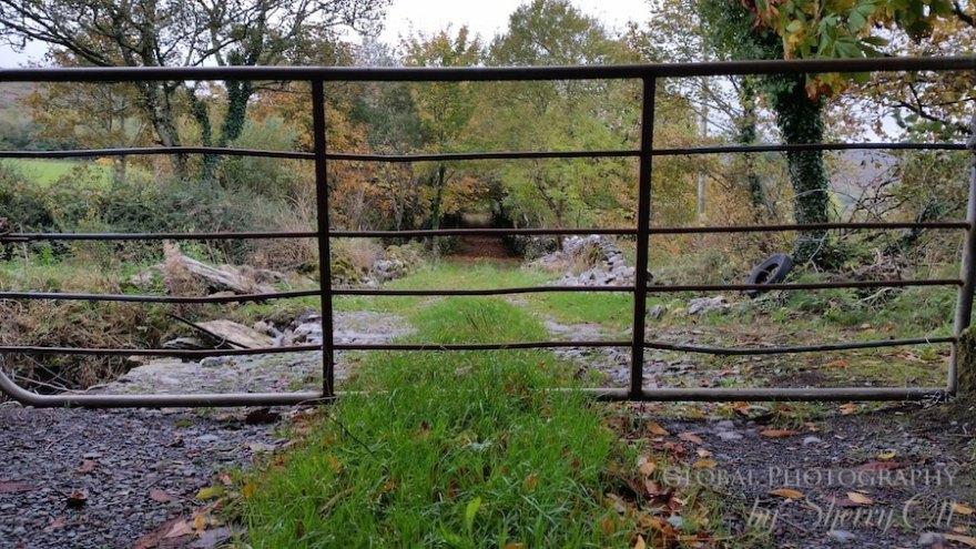 Ireland Gate Wild Atlantic Way