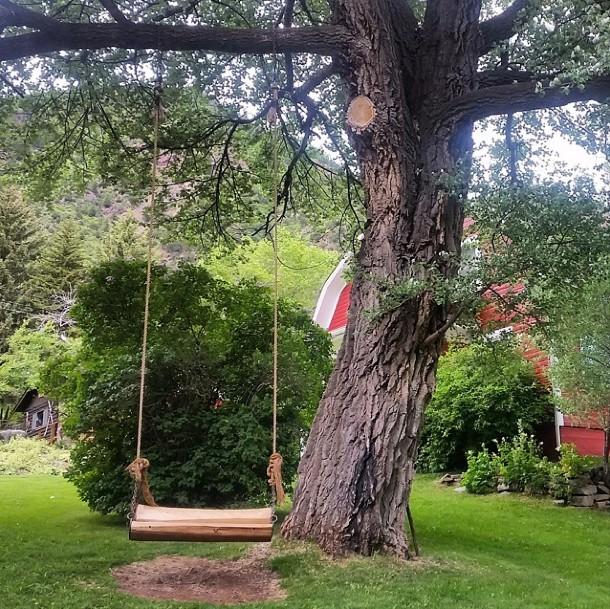 Tree Swing Colorad Rockies