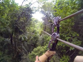 Belize Jungle Adventure
