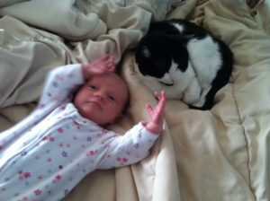New baby Kate and Palucci getting along...sort of.