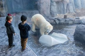 Winnipeg Zoo