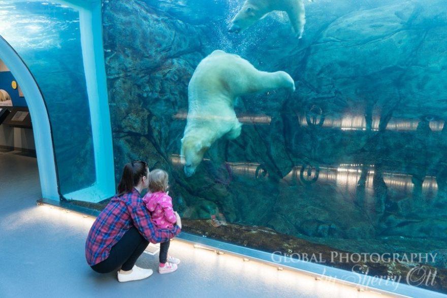 Winnipeg Zoo