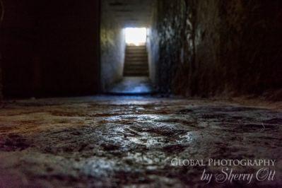 Devonport Bunker