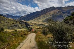 local day hikes new zealand