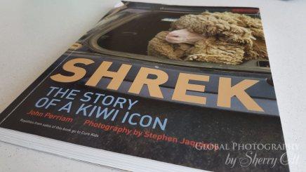 Shrek sheep book