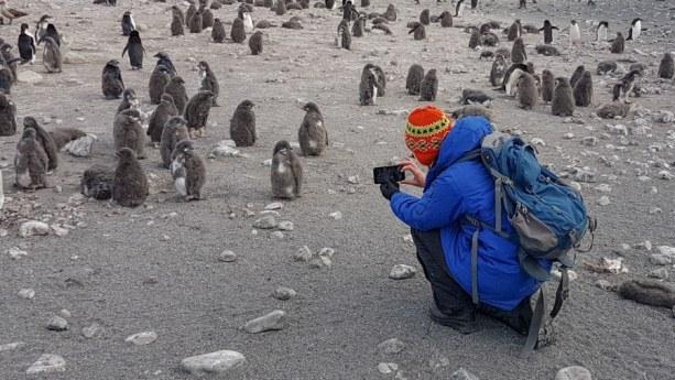 eastern antarctica camera