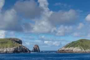 Snares New Zealand Island