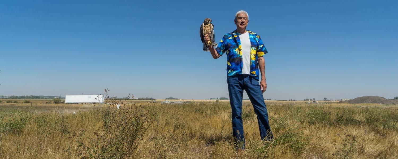 Alberta birds of prey hawk release tom jackson