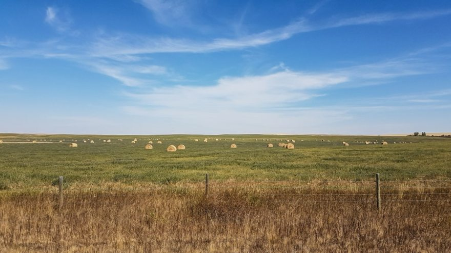 Badlands farming fields in Alberta