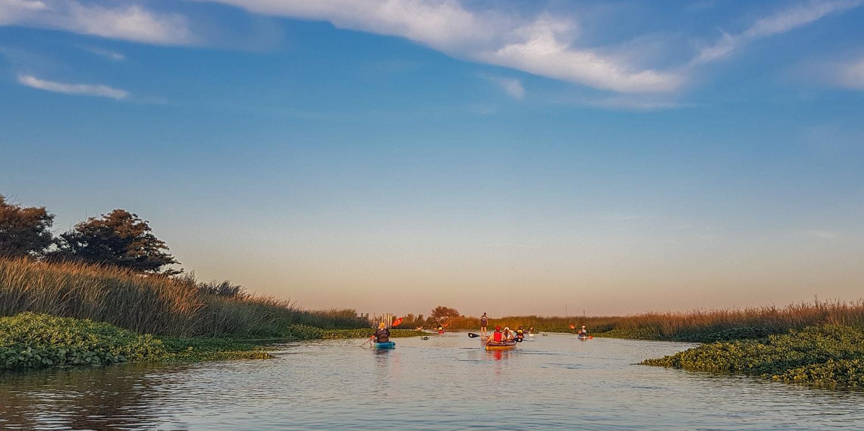 Discover California Delta