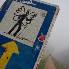 camino de santiago solo