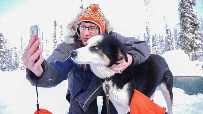 dog sledding alaska