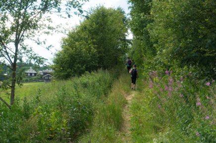 Saint Olav Ways pilegrimsleden walk