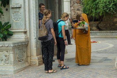 india travel tours