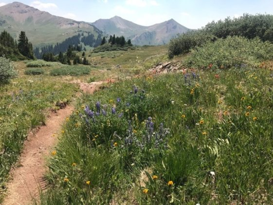 hiking crested butte