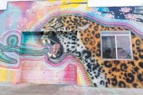 Denver Grafitti RINO