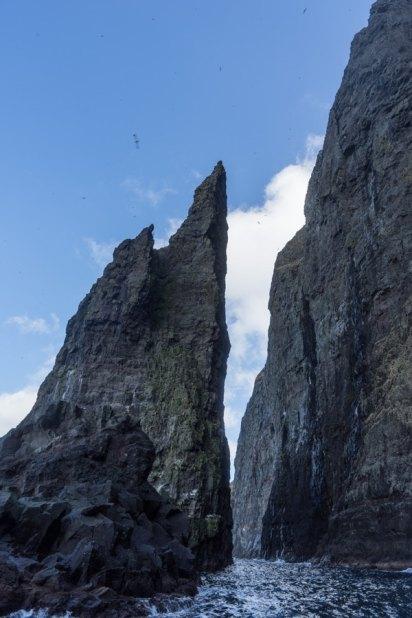 faroe islands bird cliffs