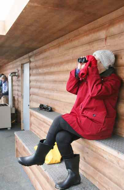 crane migration nebraska luxury blind