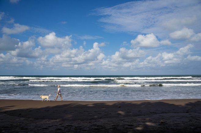costa rica tortuguero beach