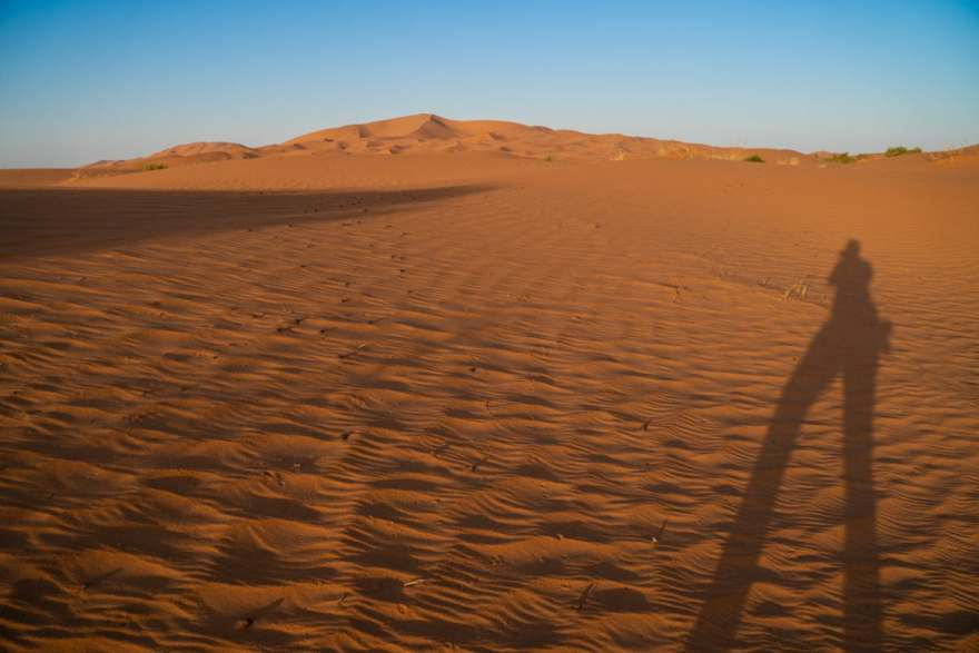 tall desert shadows