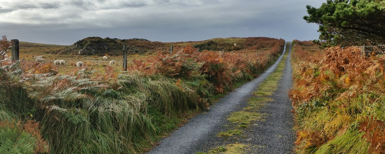 things to do in Connemara Ireland