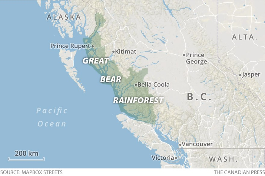 Great bear rainforest map