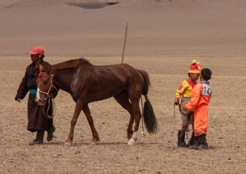 naadam festival horse race gobi desert