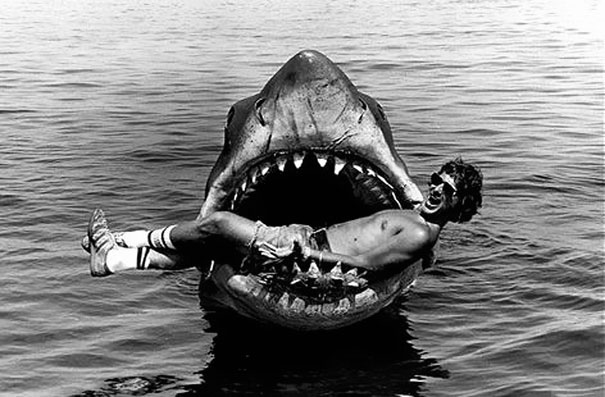 1409352333948_Jaws
