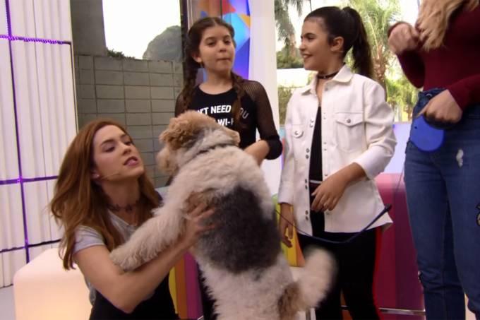 Produção da Globo negou que o cachorro fosse anestesiado; revelação aconteceu no Vídeo Show (Foto: Reprodução)