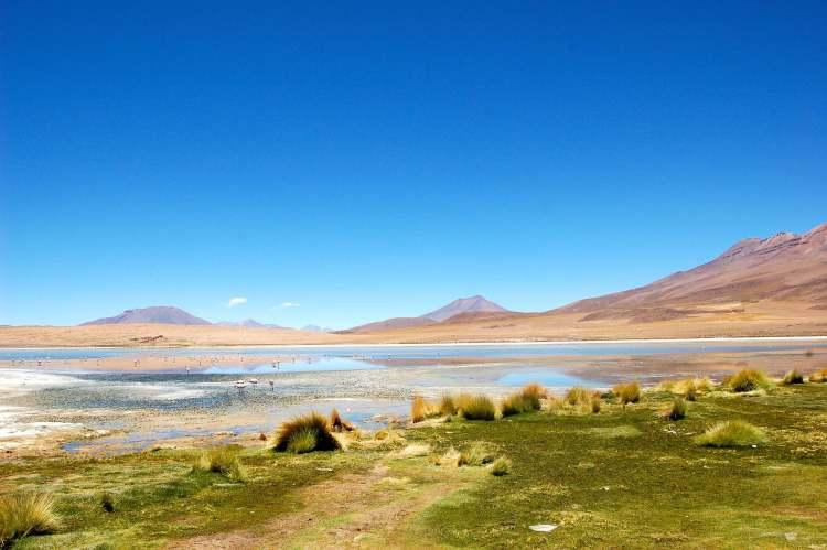 Amoureux de la nature authentique, la Bolivie vous plongera au cœur d'une nature exceptionnelle, lors d'un séjour hors des sentiers battus.