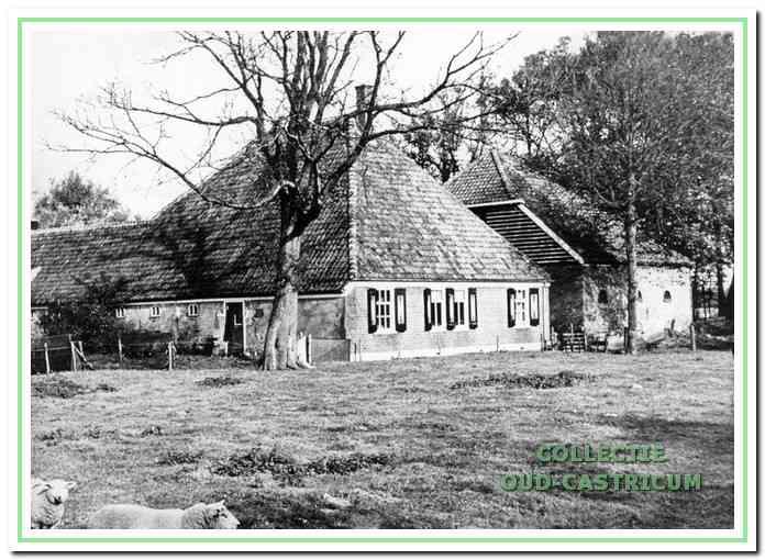 Duinboerderij Zeeveld, tot 1968 nog als boerderij in gebruik door de familie Mooij (zie 16).