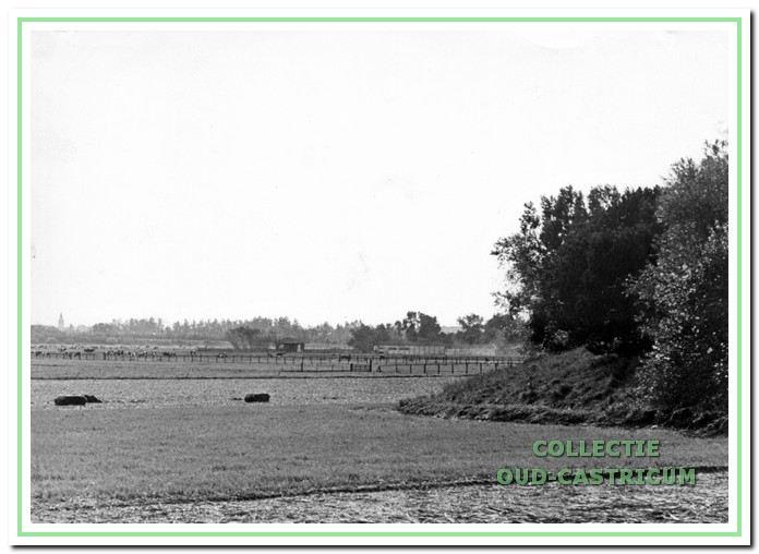 Het land van gebroeders Heere. De Puikman in Castricum, foto genomen vanaf onderlangs richting de spoorlijn,  achtergrond de kerk. Vroeger liepen daar herten.