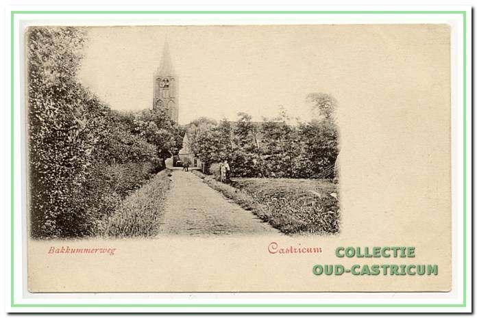 De landelijke Bakkummerweg (nu Torenstraat in Castricum) in 1901.
