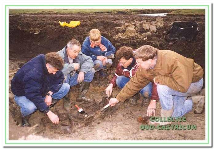 Opgraving runderskelet.