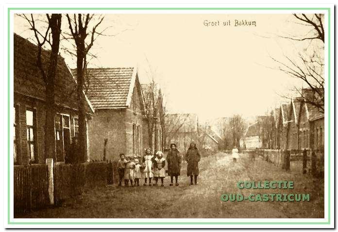 Overzicht Vinkebaan vanafwinkel Nanne naar de Bakkummerstraat toe (in 1928).