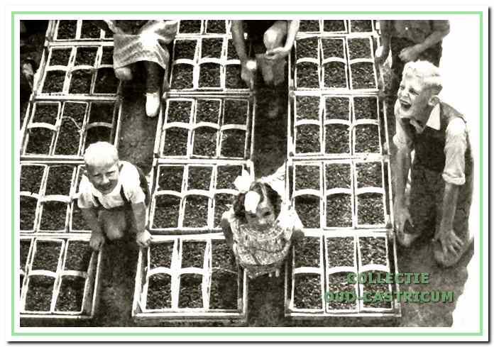 Kinderen tussen de aardbeienmanden (sloffen).