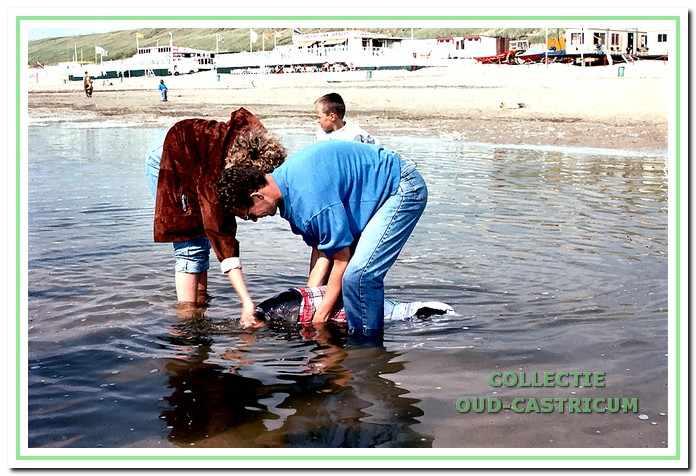 Aangespoelde bruinvis aan het strand.