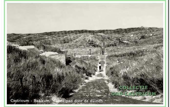 Duinen aan de Flewosche weg met links een manschapsbunker uit de Tweede Wereldoorlog.